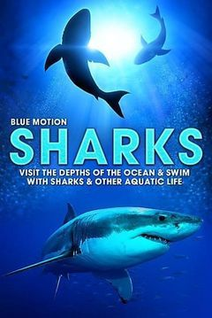 Blue Motion - Rulers of the oceans