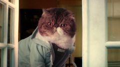 Keanu (Cat Spoof Trailer)