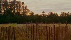 Bloodworth (English Trailer 1)